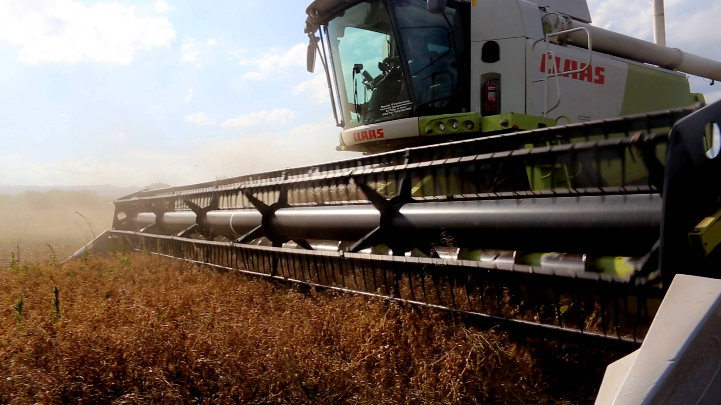 Modern technology ensures high efficiency during the harvest.