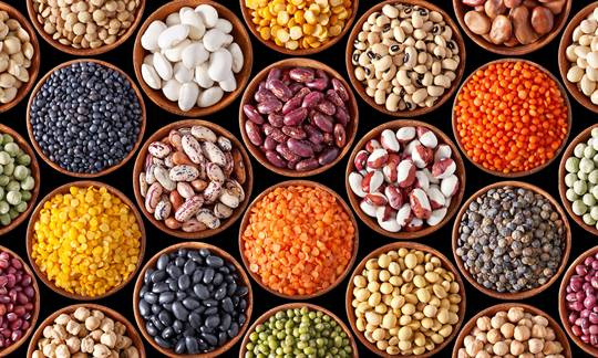 Cono is a leading partner in the export of sustainably grown chickpeas, beans and chia seeds.